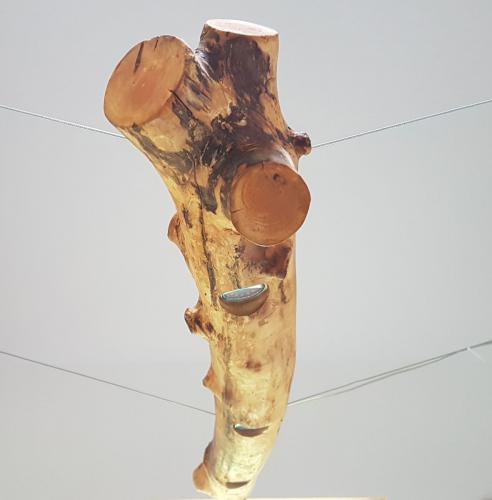 Appel-lamp